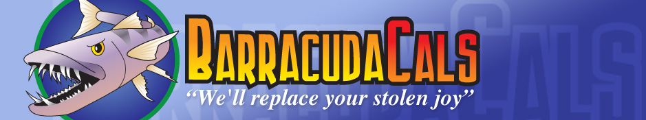 BARRACUDACALS Aircraft decals (military)
